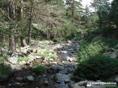 Valle del Lozoya - Camino de la Angostura;rutas faciles senderismo madrid fotos de senderismo